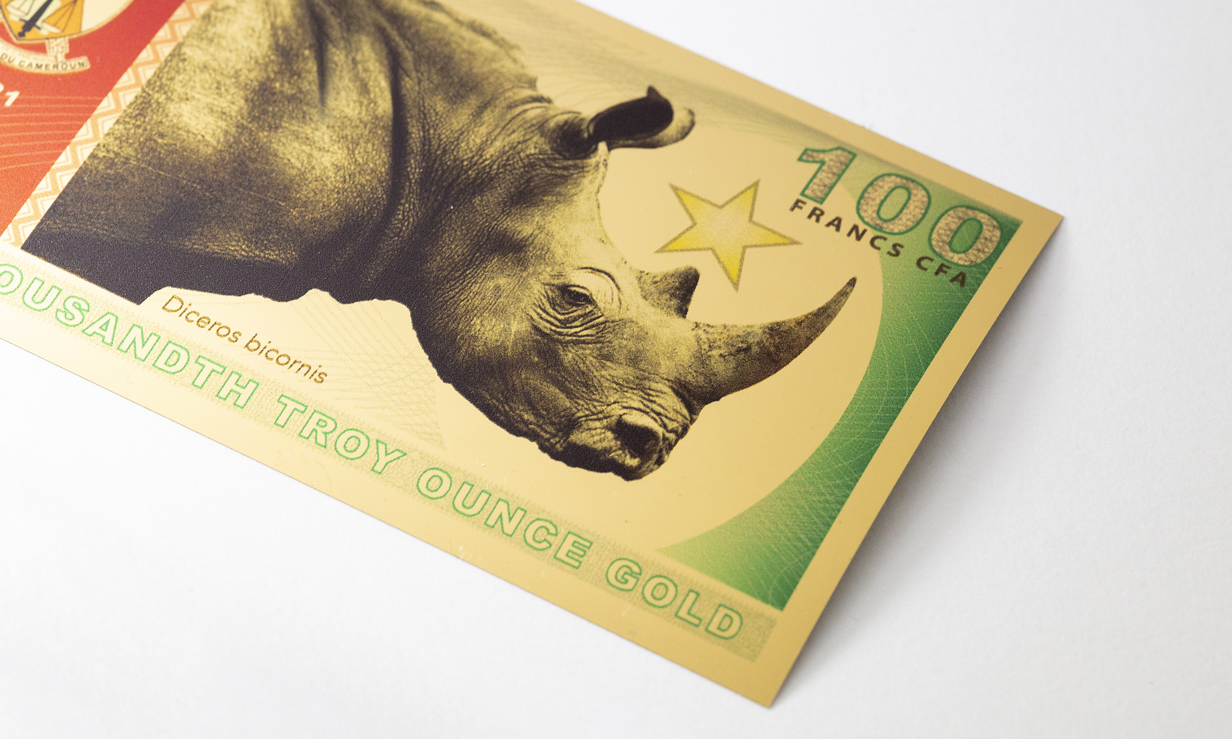 Rhino Aurum for Cameroon on a white background